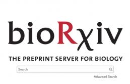 bioRxiv homepage