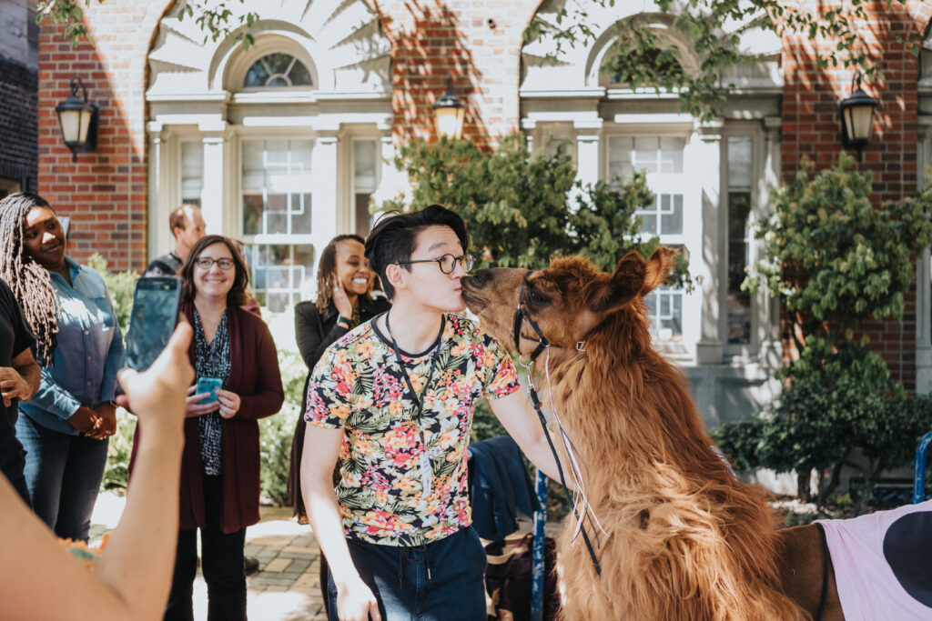 ScholCommLab researcher Asura Enkhbayar smooches a llama in front of a sunlit brick building