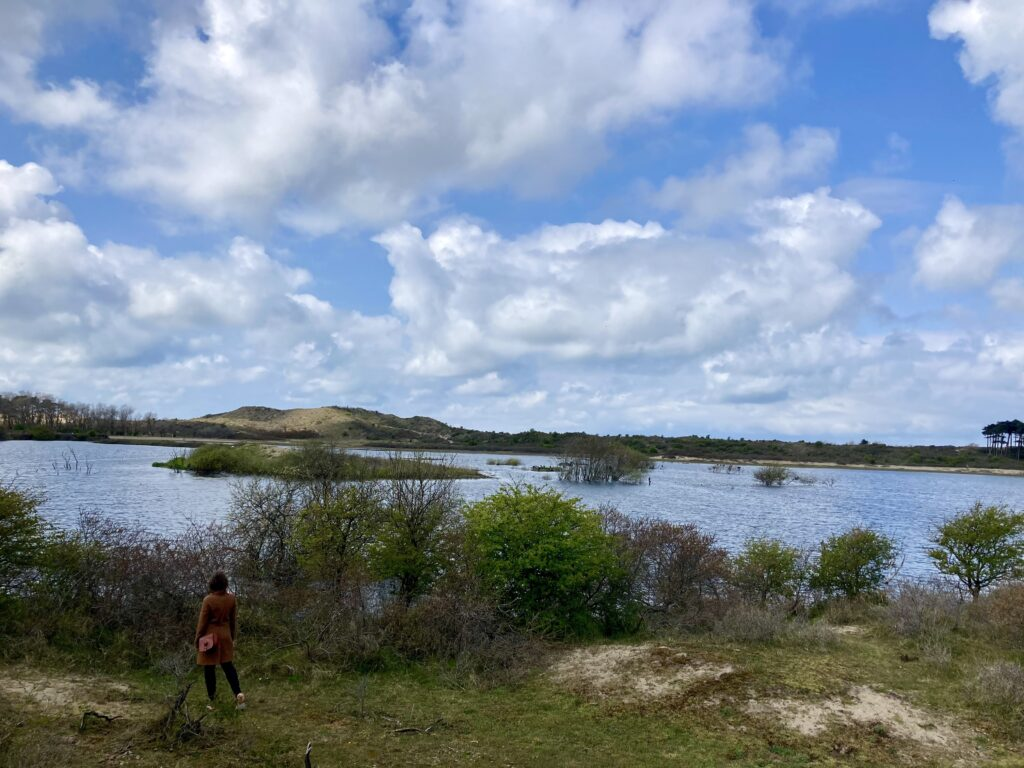 Kathleen Gregory looks out at a landscape of shrubs, water, dunes, and bright clouded sky.